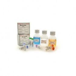 Puromycin (solution)