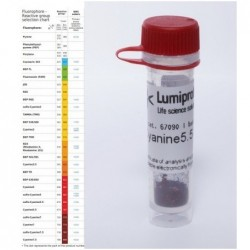 BDP FL tetrazine. 5 mg
