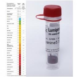 BDP FL tetrazine. 25 mg