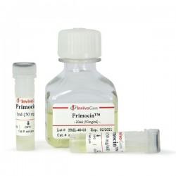 Primocin 1 g (1 x 20 ml)