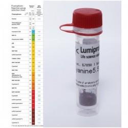 FAM DBCO, 6-isomer, 100 mg