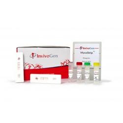 MycoStrip™ - Mycoplasma...